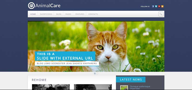 animal care wordpress theme - arunace blog