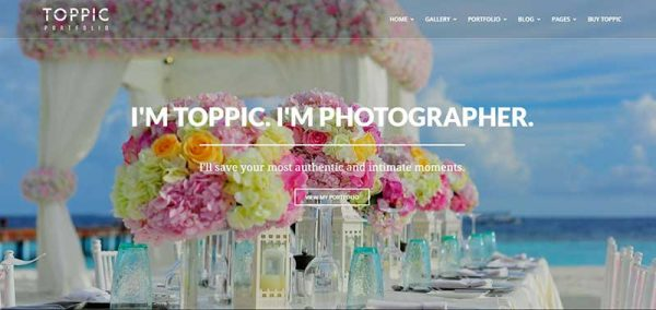 toppic wordpress theme - arunace blog